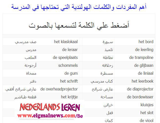 أهم المفردات والكلمات الهولندية التي تحتاجها في المدرسة
