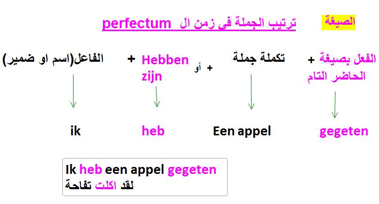 شرح ترتيب الجملة في زمن الماضي في اللغة الهولندية