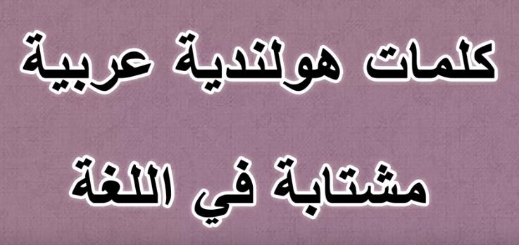 كلمات هولندية عربية متشابة في اللغة واللفظ - تعلم اللغة الهولندية معنا