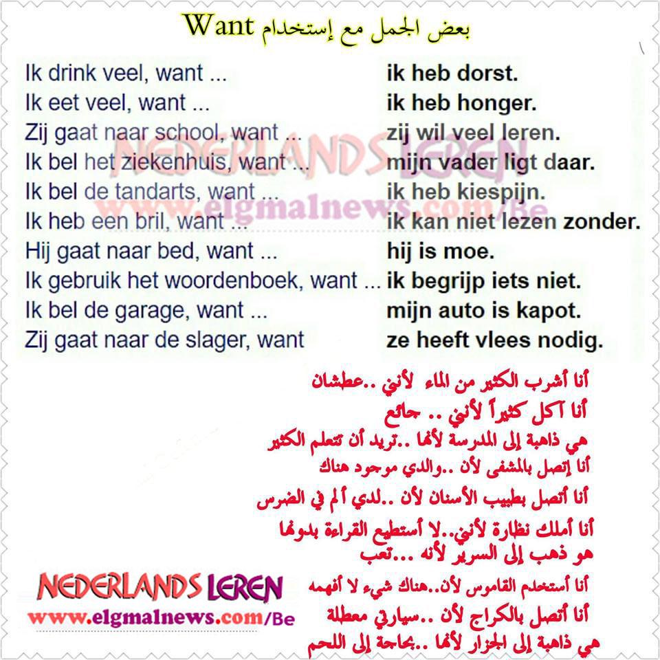 بعض الجمل مع استخدام Want في اللغة الهولندية