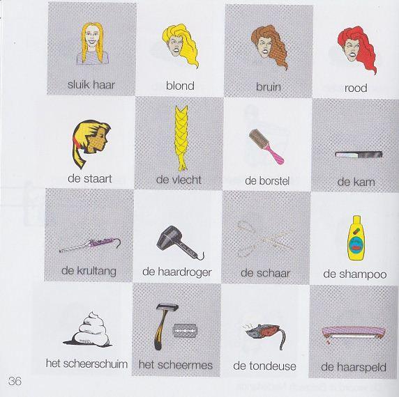 الجزء الخامس كلمات تستخدمها عند الحلاق تعلم الهولندية